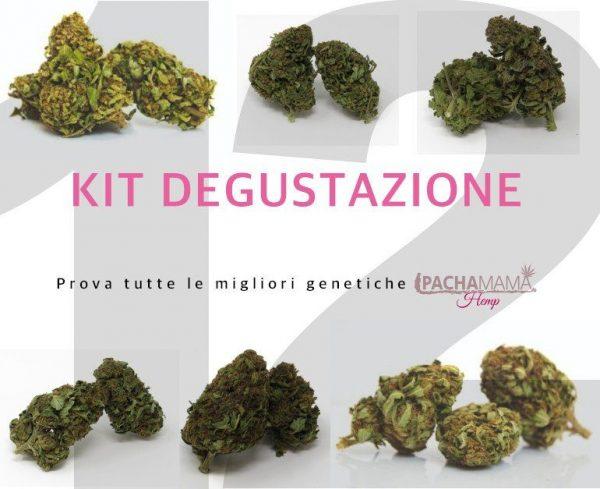 Pachamama-kit-degustazione-fiori-canapa-biologica-12