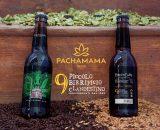 Pachamama-Birra-Fruit-Cake-articolo-blog